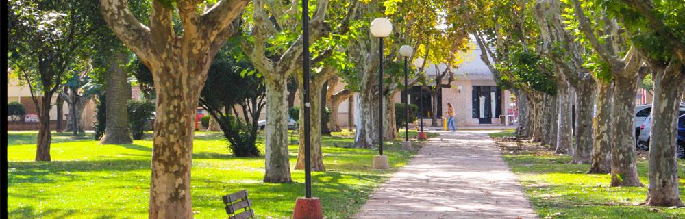 plazasanmartin.jpg